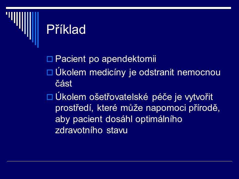 Příklad  Pacient po apendektomii  Úkolem medicíny je odstranit nemocnou část  Úkolem ošetřovatelské péče je vytvořit prostředí, které může napomoci
