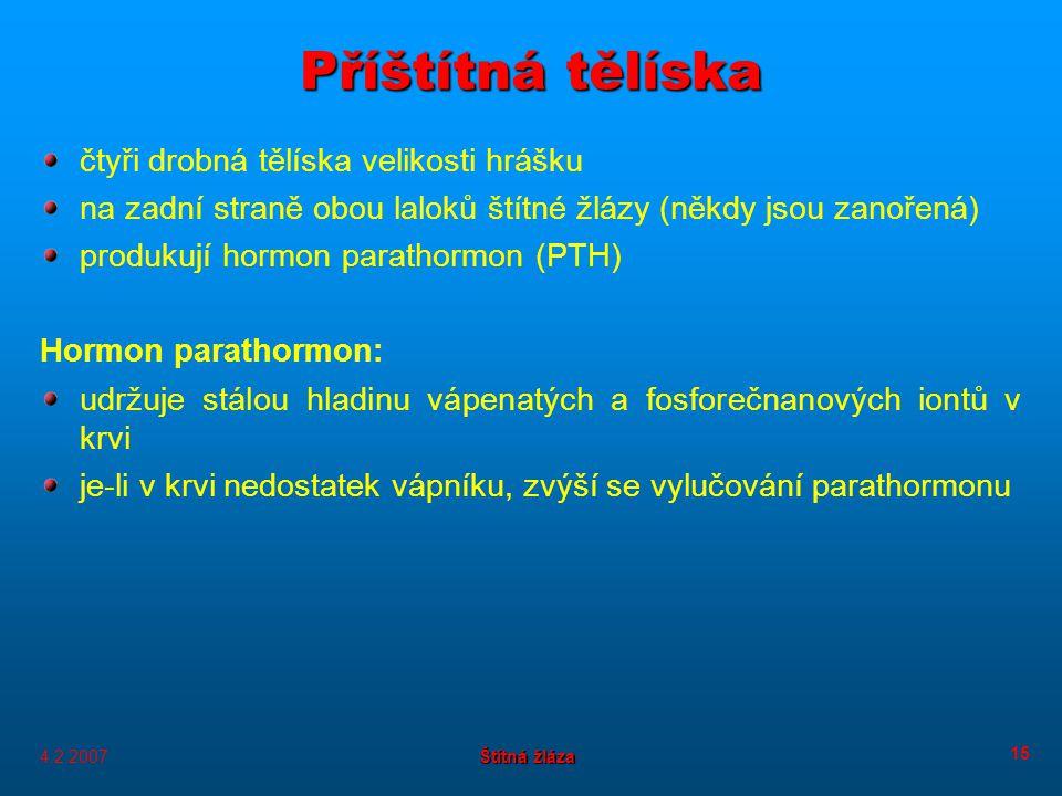 4.2.2007 Štítná žláza 15 Příštítná tělíska čtyři drobná tělíska velikosti hrášku na zadní straně obou laloků štítné žlázy (někdy jsou zanořená) produkují hormon parathormon (PTH) Hormon parathormon: udržuje stálou hladinu vápenatých a fosforečnanových iontů v krvi je-li v krvi nedostatek vápníku, zvýší se vylučování parathormonu