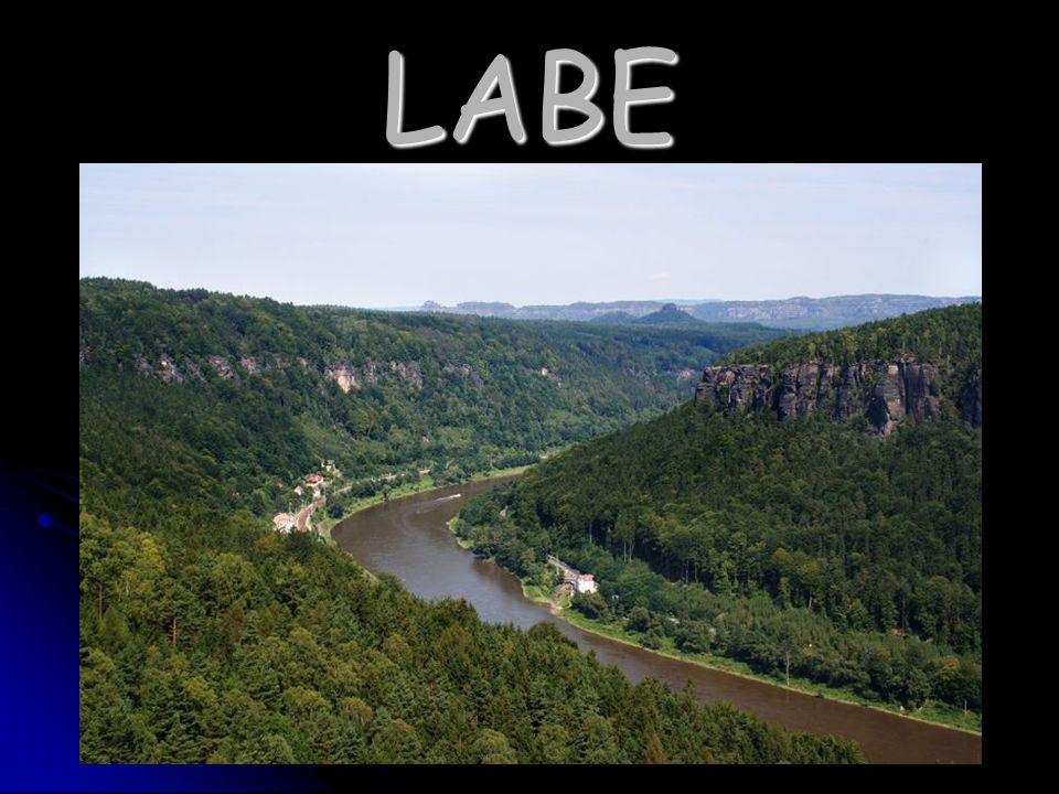Labe je jednou z největších řek a vodních cest na území celé Evropy Labe je jednou z největších řek a vodních cest na území celé Evropy pramení v Krkonoších na Labské louce pramení v Krkonoších na Labské louce protéká Německem a ústí do Severního moře protéká Německem a ústí do Severního moře je to jediná Česká řeka, jejíž název není ženského rodu je to jediná Česká řeka, jejíž název není ženského rodu na svém soutoku s Vltavou má nižší průtok a také je od svého pramene kratší, ale i přesto se za její přítok nepovažuje na svém soutoku s Vltavou má nižší průtok a také je od svého pramene kratší, ale i přesto se za její přítok nepovažuje mezi města na Labi patří například Špindlerův mlýn, Pardubice, Mělník, Ústí nad Labem, Drážďany či Hamburk mezi města na Labi patří například Špindlerův mlýn, Pardubice, Mělník, Ústí nad Labem, Drážďany či Hamburk chráněná území podél české části Labe : KRNAP, CHKO České středohoří, CHKO Labské pískovce, NP České Švýcarsko chráněná území podél české části Labe : KRNAP, CHKO České středohoří, CHKO Labské pískovce, NP České Švýcarsko