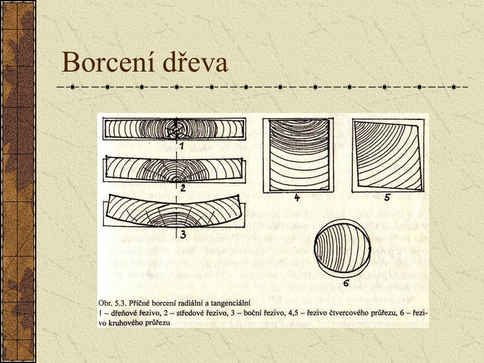 5.1.8.2 Borcení dřeva Borcením se rozumí tvarové změny, které vznikají jednak vlivem nestejnoměrného sesychání ve směru podélném, radiálním a tangenci