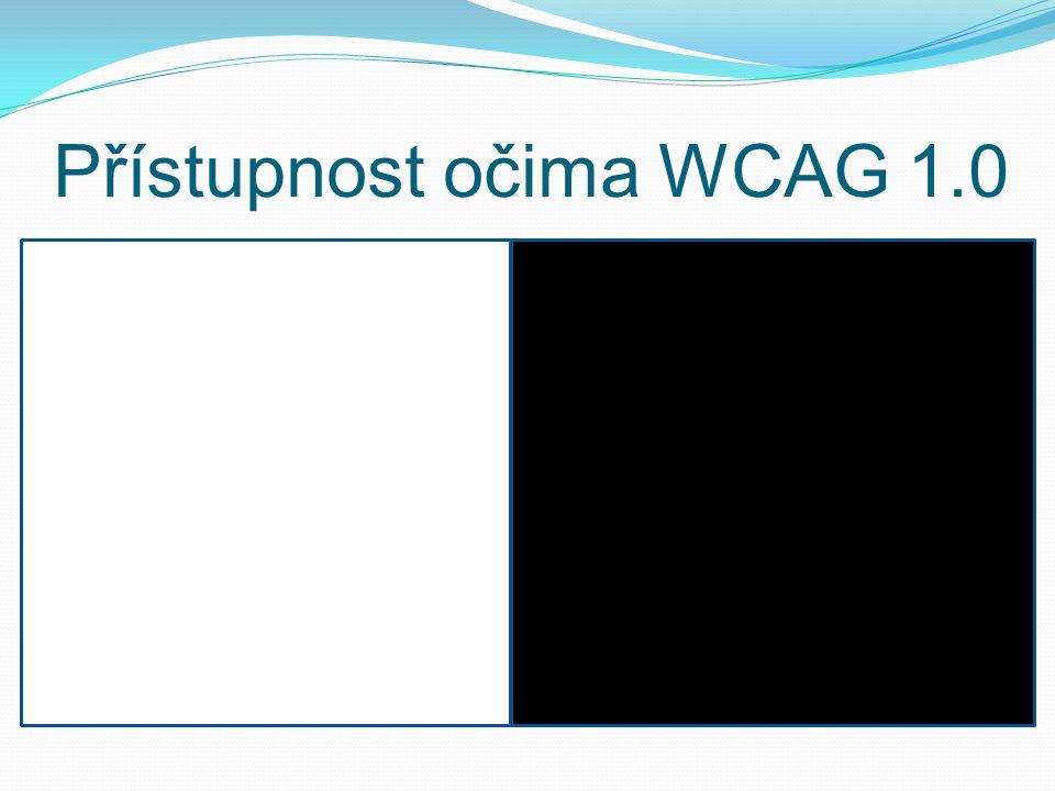 Přístupnost očima WCAG 1.0
