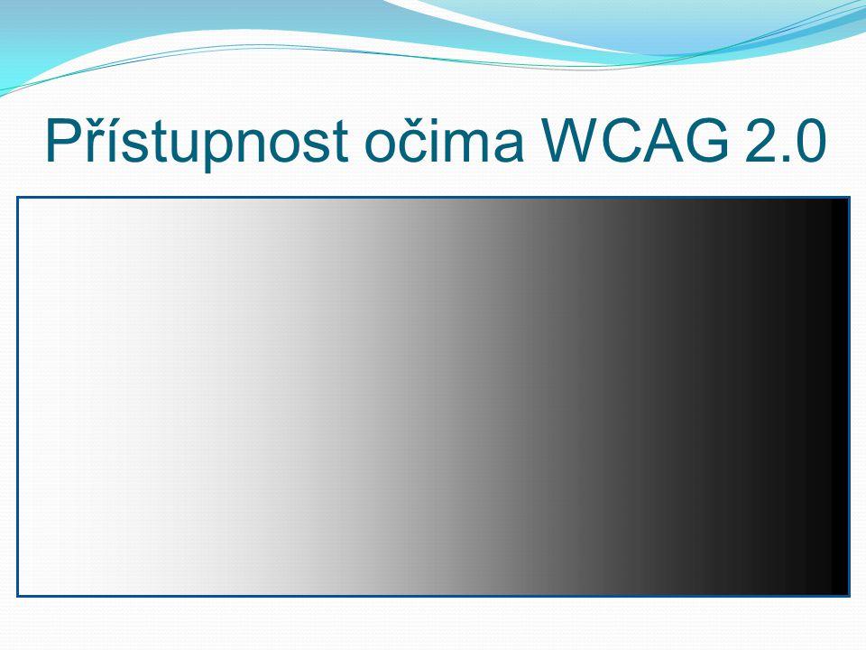 Přístupnost očima WCAG 2.0