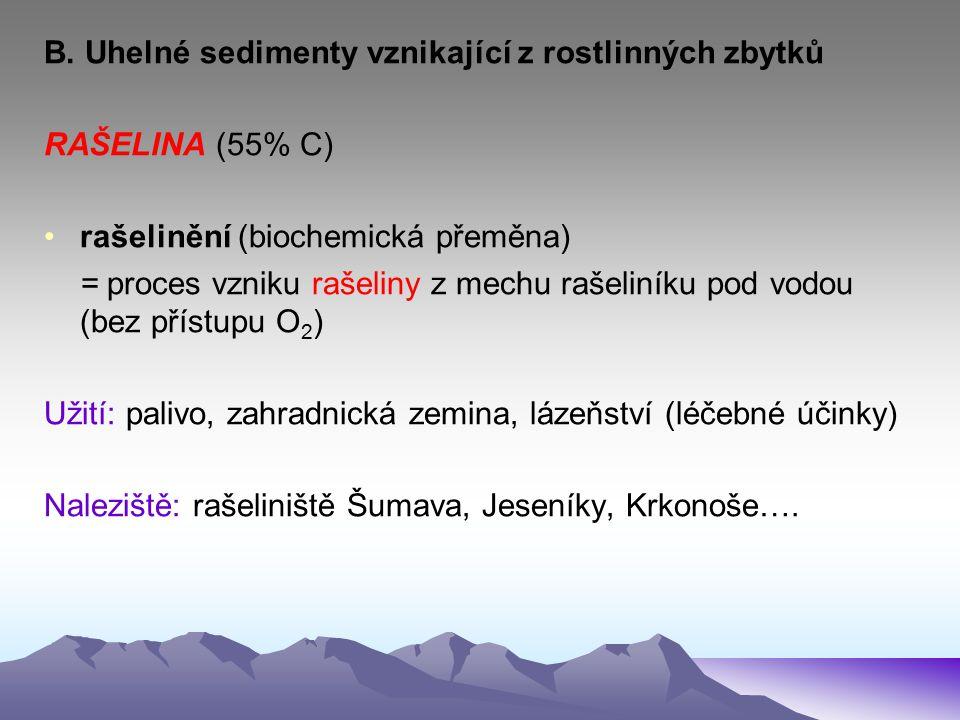 B. Uhelné sedimenty vznikající z rostlinných zbytků RAŠELINA (55% C) rašelinění (biochemická přeměna) = proces vzniku rašeliny z mechu rašeliníku pod