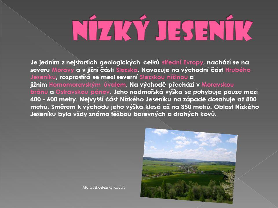 Je jedním z nejstarších geologických celků střední Evropy, nachází se na severu Moravy a v jižní části Slezska. Navazuje na východní část Hrubého Jese