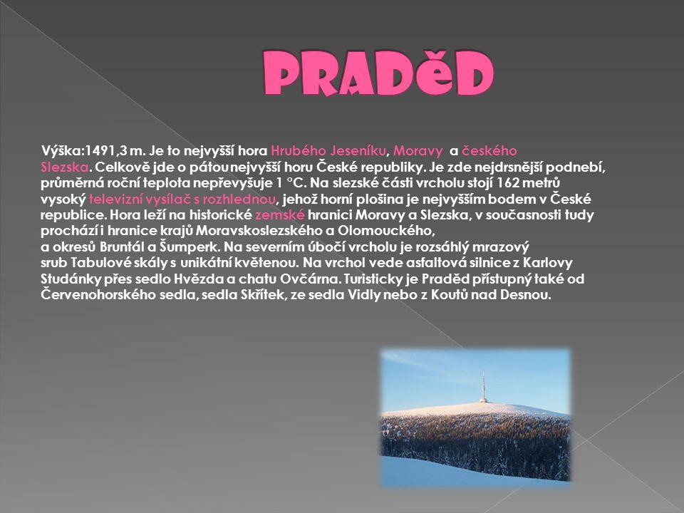Výška:1491,3 m. Je to nejvyšší hora Hrubého Jeseníku, Moravy a českého Slezska. Celkově jde o pátou nejvyšší horu České republiky. Je zde nejdrsnější