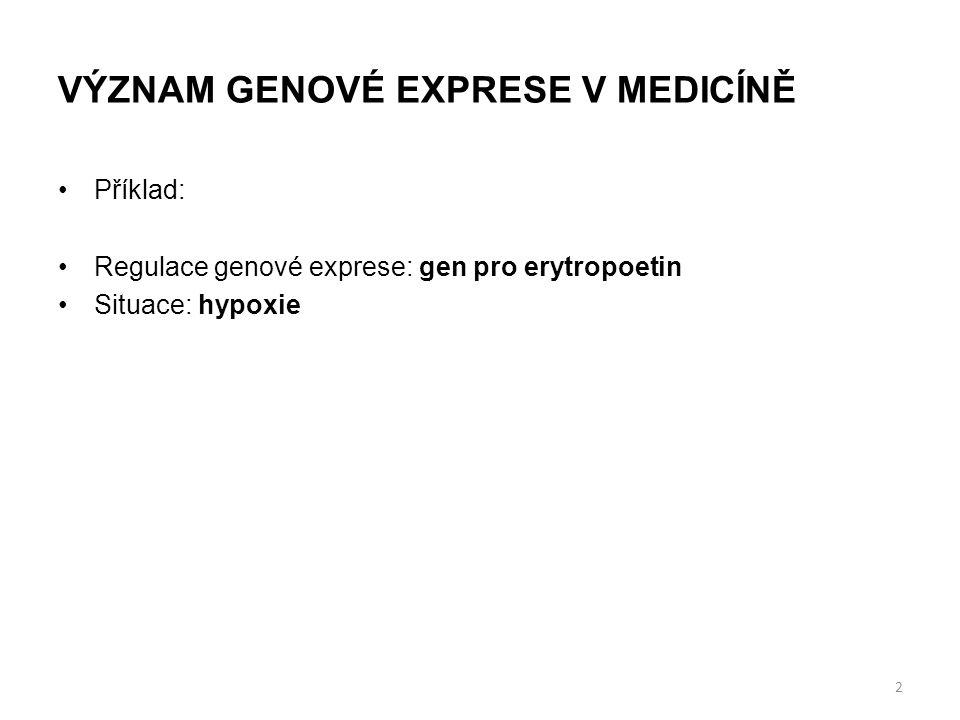 VÝZNAM GENOVÉ EXPRESE V MEDICÍNĚ Příklad: Regulace genové exprese: gen pro erytropoetin Situace: hypoxie 2
