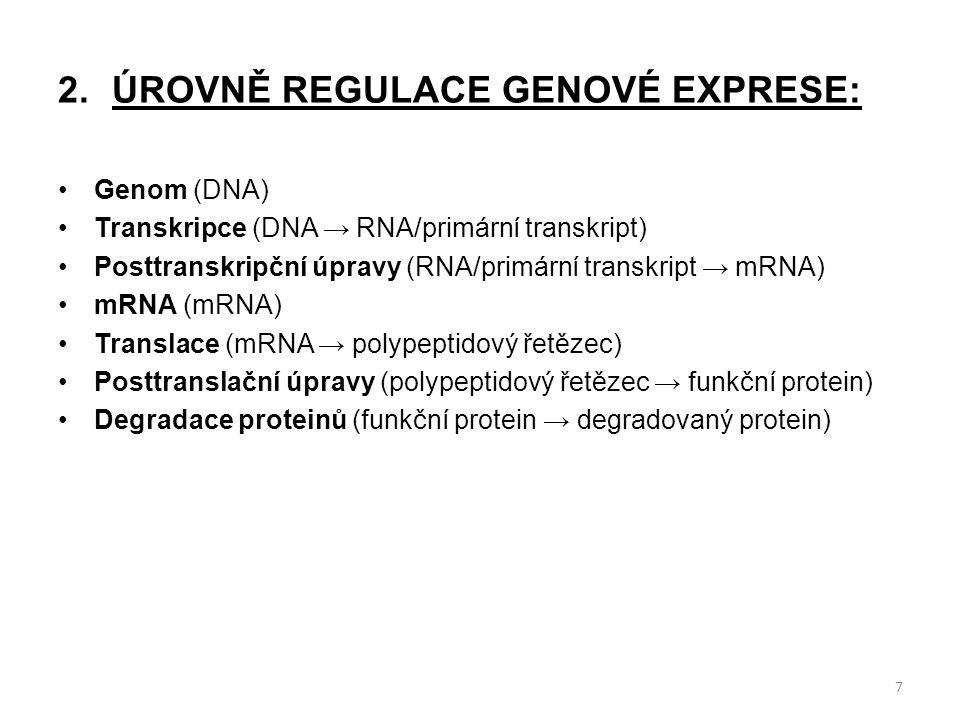 2.ÚROVNĚ REGULACE GENOVÉ EXPRESE: Genom (DNA) Transkripce (DNA → RNA/primární transkript) Posttranskripční úpravy (RNA/primární transkript → mRNA) mRNA (mRNA) Translace (mRNA → polypeptidový řetězec) Posttranslační úpravy (polypeptidový řetězec → funkční protein) Degradace proteinů (funkční protein → degradovaný protein) 7