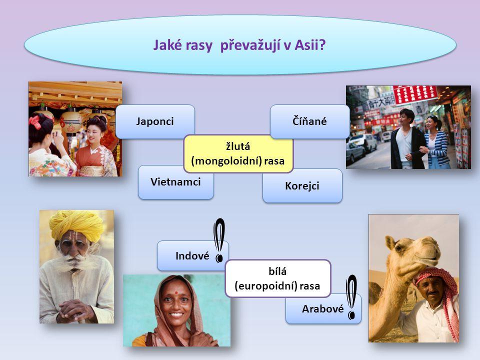 Jaké rasy převažují v Asii.