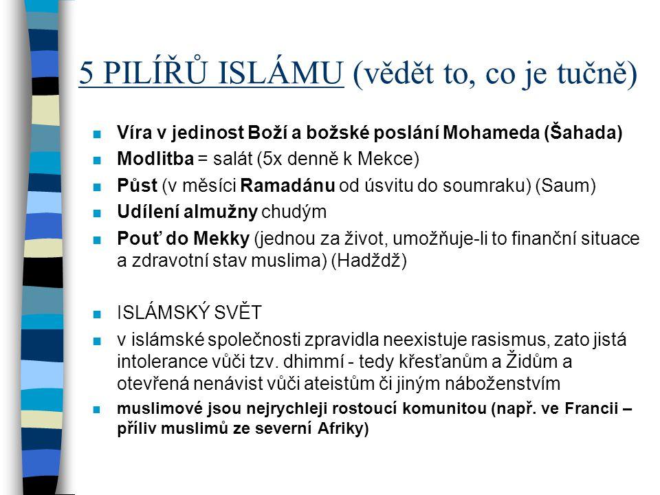 5 PILÍŘŮ ISLÁMU (vědět to, co je tučně) n Víra v jedinost Boží a božské poslání Mohameda (Šahada) n Modlitba = salát (5x denně k Mekce) n Půst (v měsí