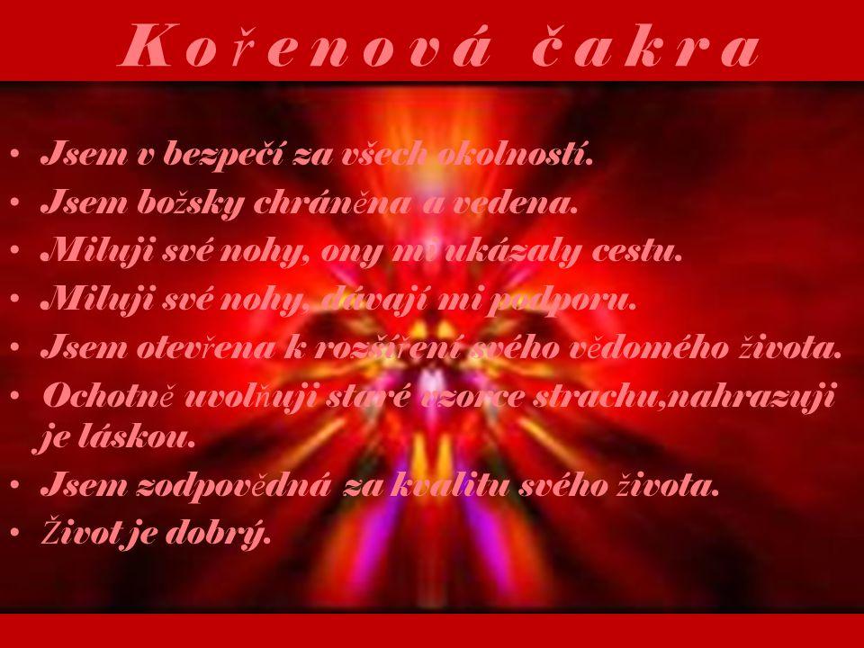 K o ř e n o v á č a k r a V ěř ím, ž e ž ivot m ě podporuje v pln ě ní mého účelu.