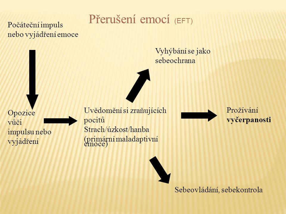 Počáteční impuls nebo vyjádření emoce Opozice vůči impulsu nebo vyjádření Uvědomění si zraňujících pocitů Strach/úzkost/hanba (primární maladaptivní e
