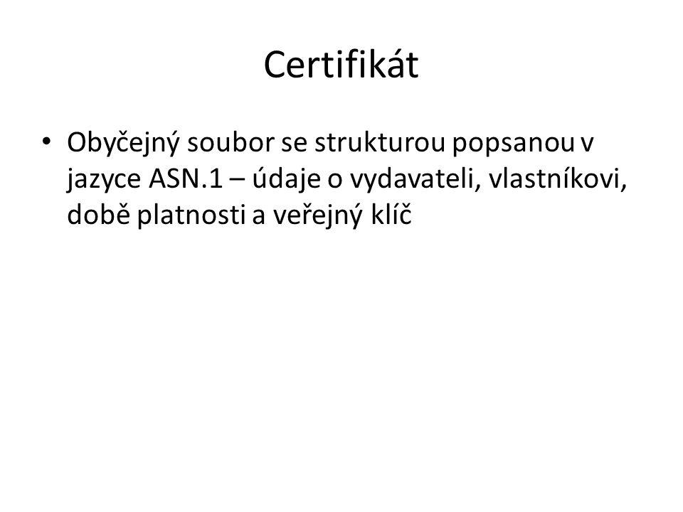 Certifikát Obyčejný soubor se strukturou popsanou v jazyce ASN.1 – údaje o vydavateli, vlastníkovi, době platnosti a veřejný klíč