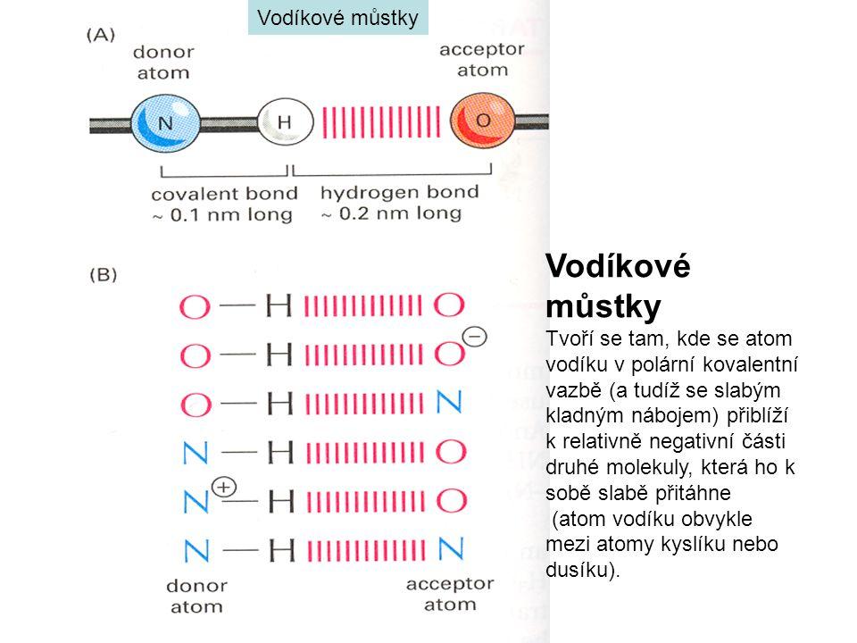 Vodíkové můstky Tvoří se tam, kde se atom vodíku v polární kovalentní vazbě (a tudíž se slabým kladným nábojem) přiblíží k relativně negativní části druhé molekuly, která ho k sobě slabě přitáhne (atom vodíku obvykle mezi atomy kyslíku nebo dusíku).