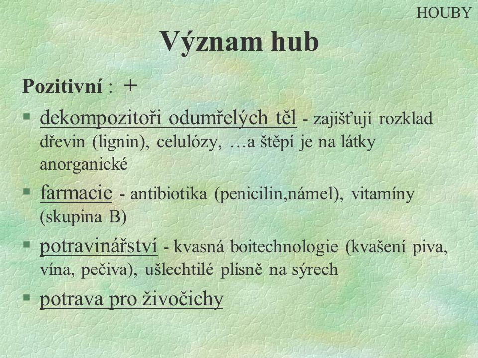 Význam hub Pozitivní : + §dekompozitoři odumřelých těl - zajišťují rozklad dřevin (lignin), celulózy, …a štěpí je na látky anorganické §farmacie - ant