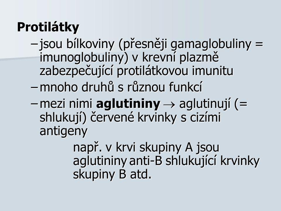 Protilátky –jsou bílkoviny (přesněji gamaglobuliny = imunoglobuliny) v krevní plazmě zabezpečující protilátkovou imunitu –mnoho druhů s různou funkcí –mezi nimi aglutininy  aglutinují (= shlukují) červené krvinky s cizími antigeny např.