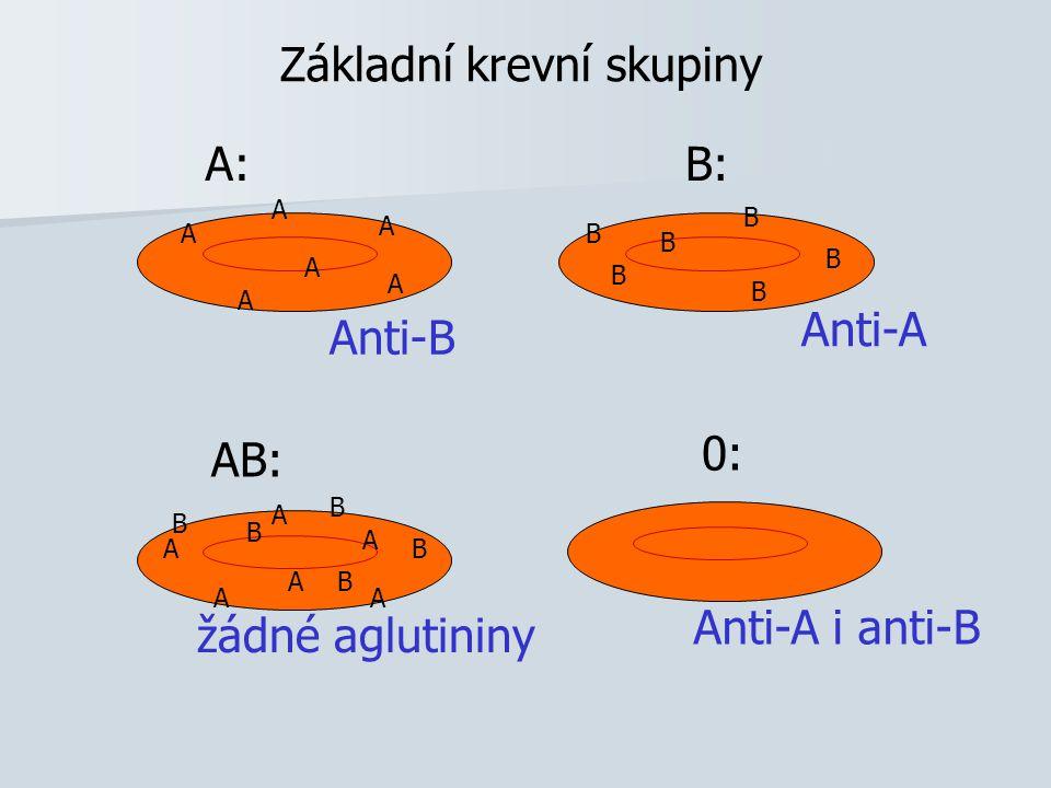 Základní krevní skupiny A: A A A A A A B: B B B B B AB: B B B B BA A A A A A 0: Anti-A Anti-B Anti-A i anti-B žádné aglutininy B