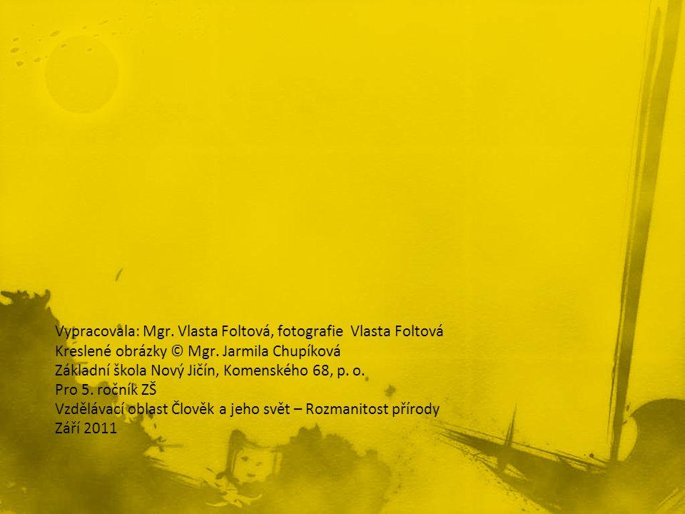Vypracovala: Mgr. Vlasta Foltová, fotografie Vlasta Foltová Kreslené obrázky © Mgr. Jarmila Chupíková Základní škola Nový Jičín, Komenského 68, p. o.