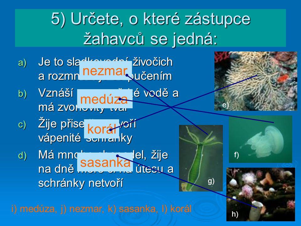 5) Určete, o které zástupce žahavců se jedná: a) Je to sladkovodní živočich a rozmnožuje se pučením b) Vznáší se v mořské vodě a má zvonovitý tvar c)