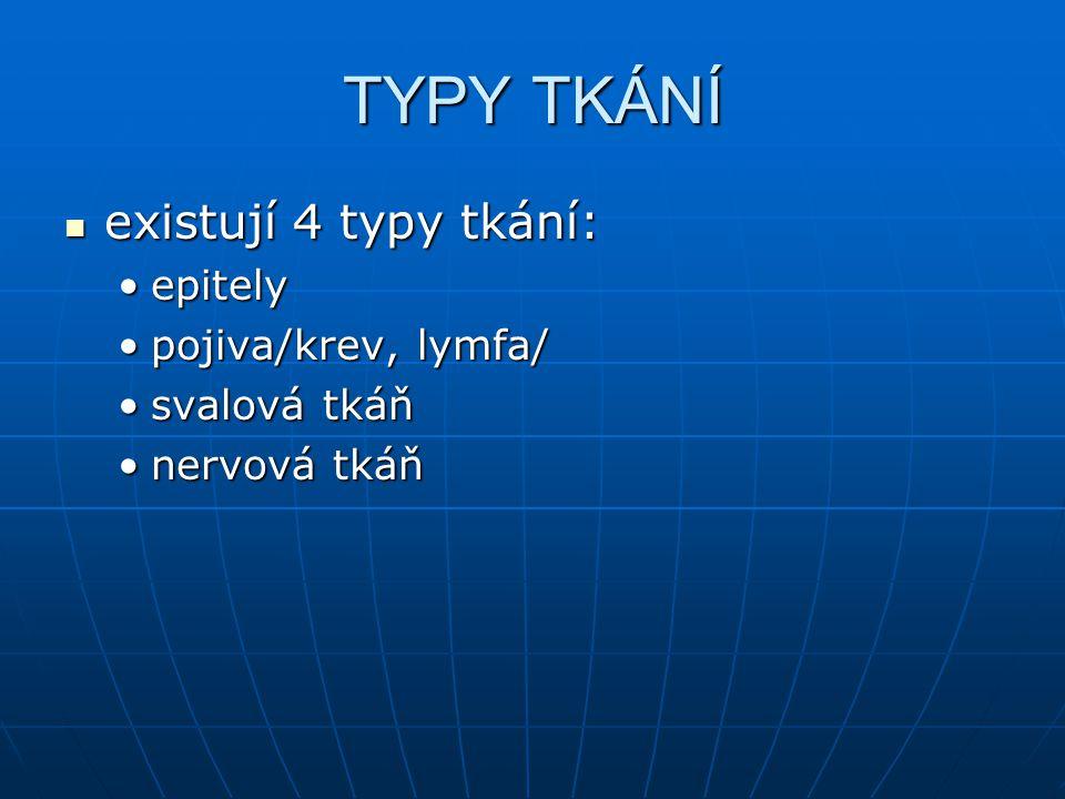 TYPY TKÁNÍ existují 4 typy tkání: existují 4 typy tkání: epitelyepitely pojiva/krev, lymfa/pojiva/krev, lymfa/ svalová tkáňsvalová tkáň nervová tkáňne