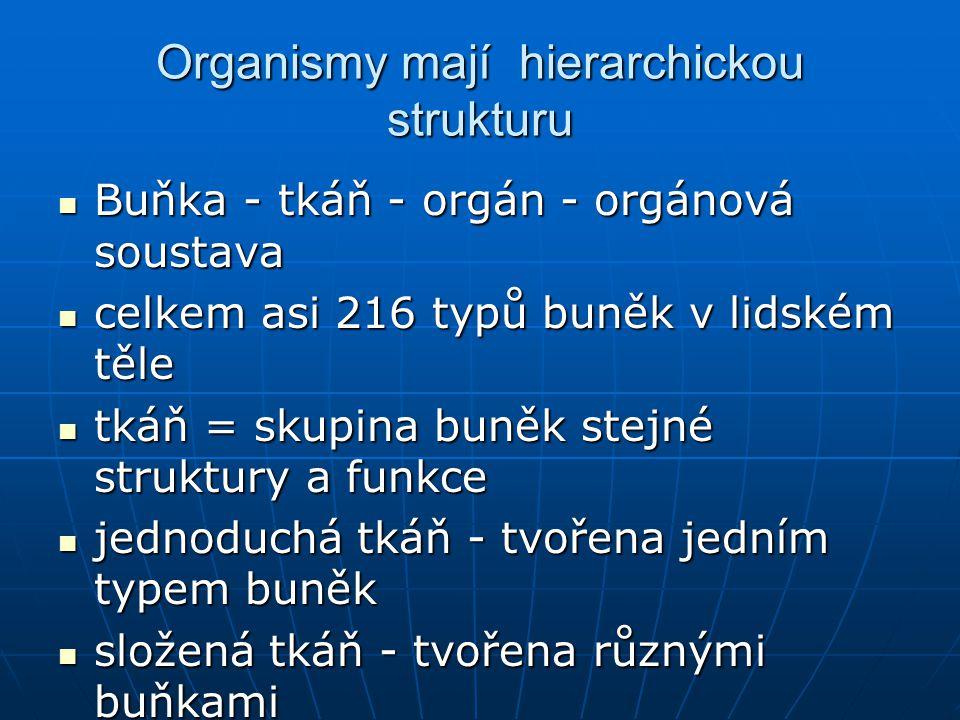 Organismy mají hierarchickou strukturu Buňka - tkáň - orgán - orgánová soustava Buňka - tkáň - orgán - orgánová soustava celkem asi 216 typů buněk v l