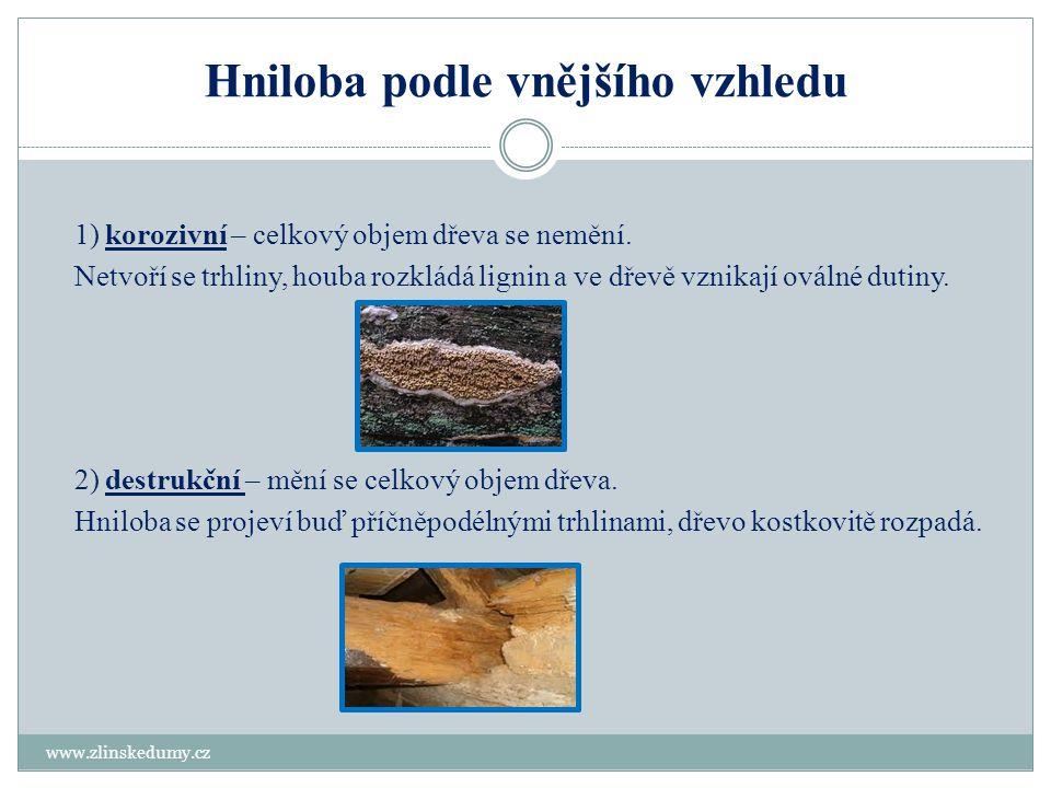 Hniloba podle vnějšího vzhledu www.zlinskedumy.cz 1) korozivní – celkový objem dřeva se nemění. Netvoří se trhliny, houba rozkládá lignin a ve dřevě v