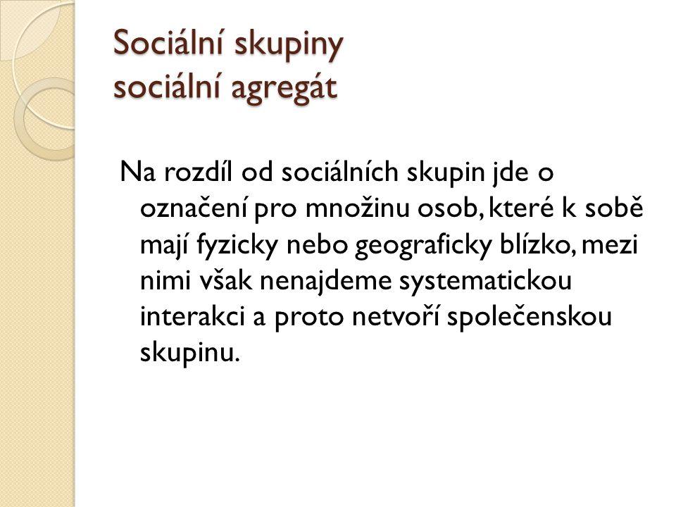 Sociální skupiny sociální agregát Na rozdíl od sociálních skupin jde o označení pro množinu osob, které k sobě mají fyzicky nebo geograficky blízko, mezi nimi však nenajdeme systematickou interakci a proto netvoří společenskou skupinu.