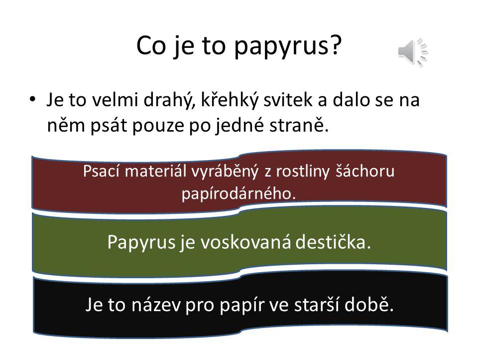 Co je to papyrus? Je to velmi drahý, křehký svitek a dalo se na něm psát pouze po jedné straně. Psací materiál vyráběný z rostliny šáchoru papírodárné