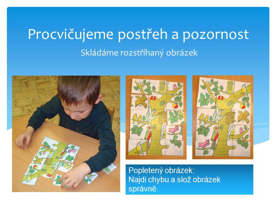 Procvičujeme postřeh a pozornost Skládáme rozstříhaný obrázek Popletený obrázek: Najdi chybu a slož obrázek správně.