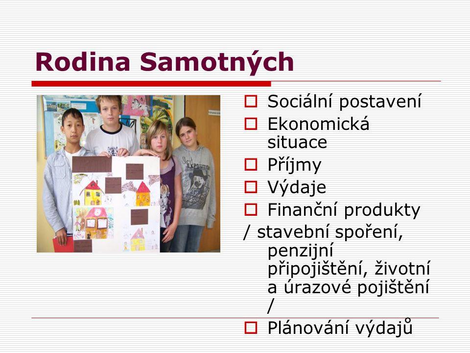 Rodina Samotných  Sociální postavení  Ekonomická situace  Příjmy  Výdaje  Finanční produkty / stavební spoření, penzijní připojištění, životní a