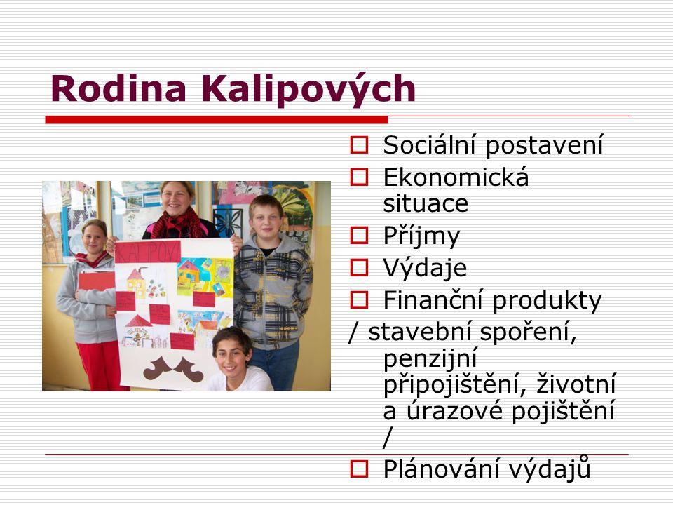 Rodina Kalipových  Sociální postavení  Ekonomická situace  Příjmy  Výdaje  Finanční produkty / stavební spoření, penzijní připojištění, životní a