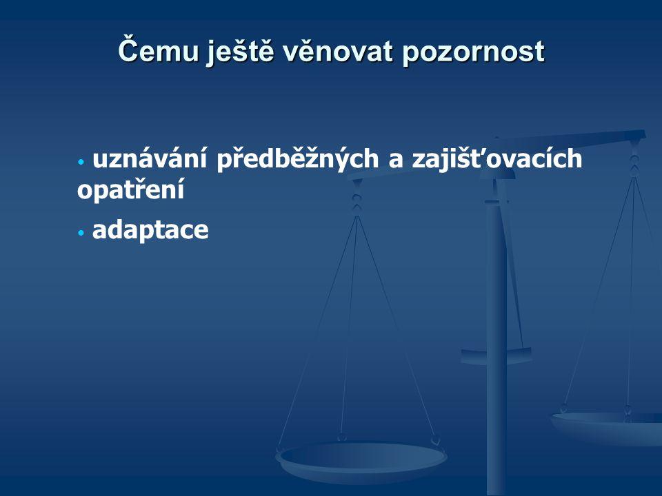 Čemu ještě věnovat pozornost uznávání předběžných a zajišťovacích opatření adaptace