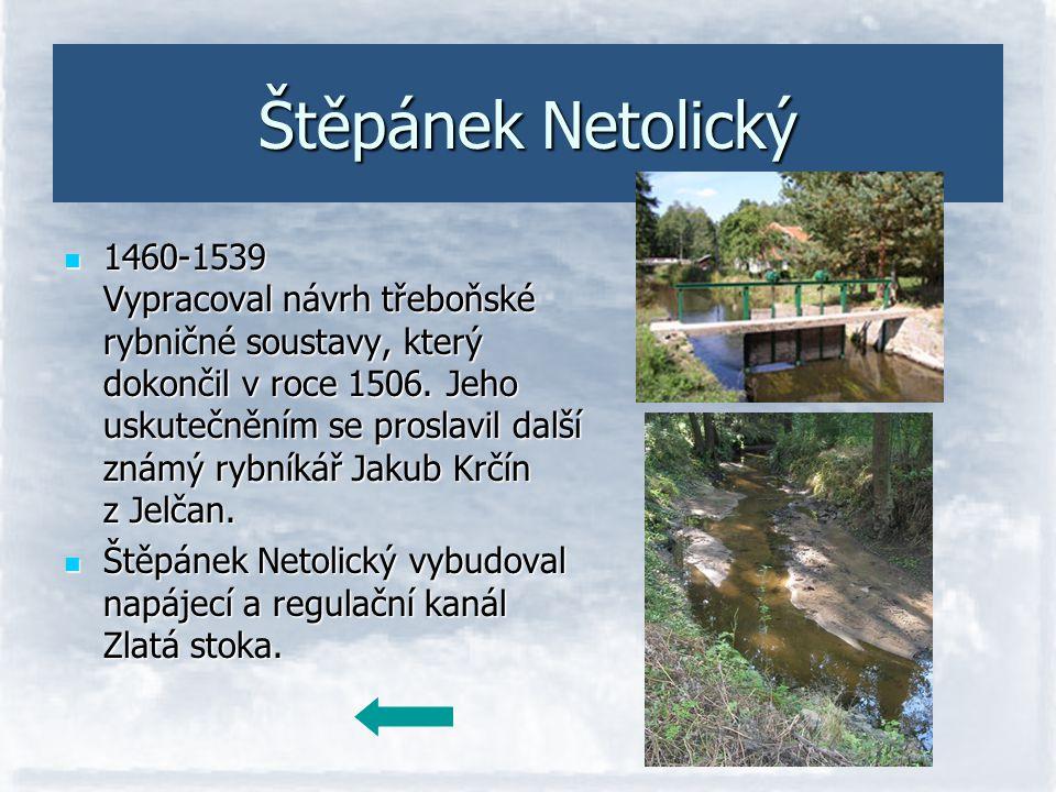 Štěpánek Netolický 1460-1539 Vypracoval návrh třeboňské rybničné soustavy, který dokončil v roce 1506. Jeho uskutečněním se proslavil další známý rybn