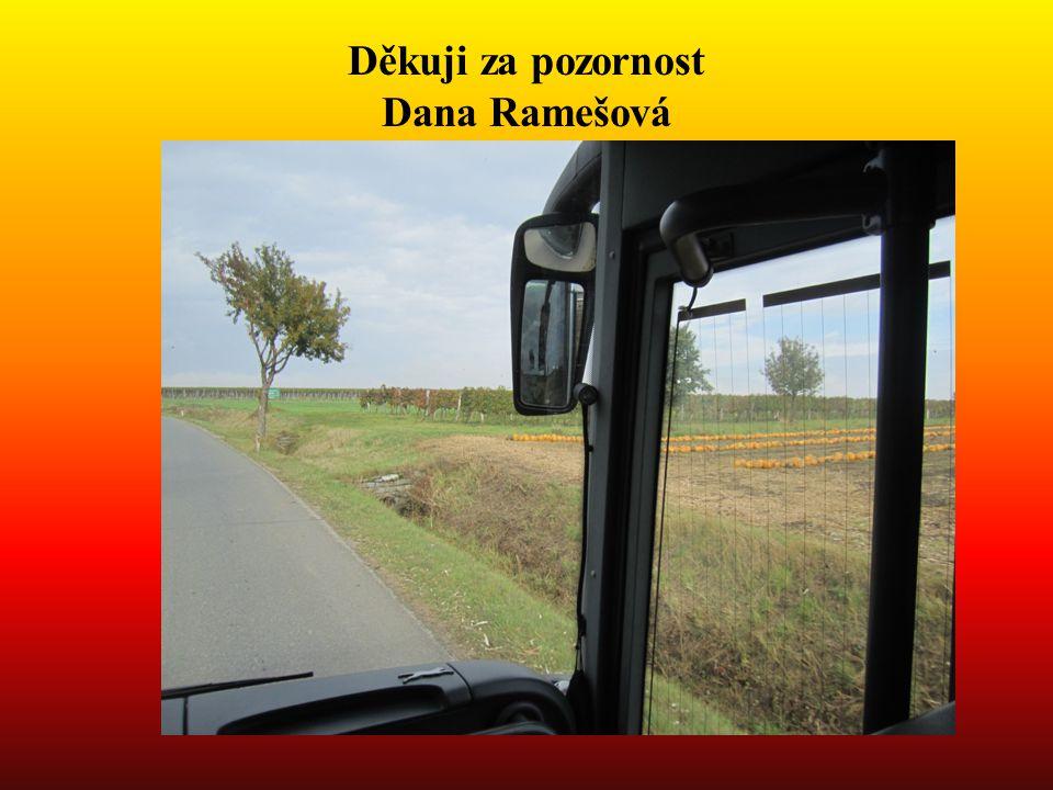 Děkuji za pozornost Dana Ramešová