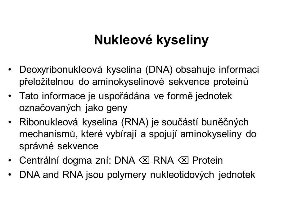 """Ústřední dogma molekulární biologie """"Svět RNA"""