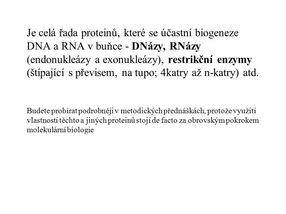 Problém: jak uložit tolik DNA do genomu?