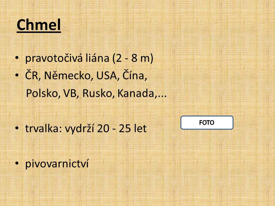 Chmel pravotočivá liána (2 - 8 m) ČR, Německo, USA, Čína, Polsko, VB, Rusko, Kanada,...