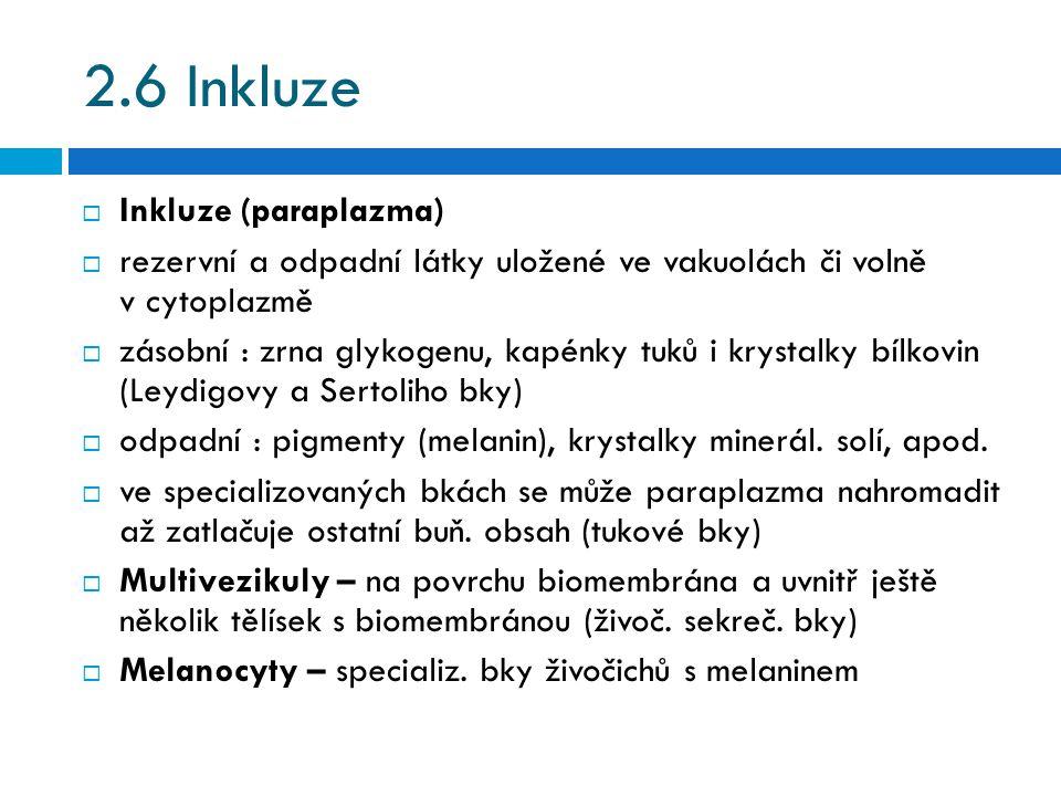 2.6 Inkluze  Inkluze (paraplazma)  rezervní a odpadní látky uložené ve vakuolách či volně v cytoplazmě  zásobní : zrna glykogenu, kapénky tuků i kr