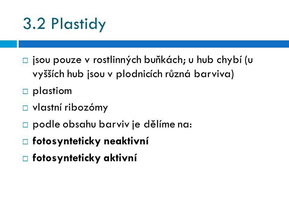 3.2 Plastidy  jsou pouze v rostlinných buňkách; u hub chybí (u vyšších hub jsou v plodnicích různá barviva)  plastiom  vlastní ribozómy  podle obsahu barviv je dělíme na:  fotosynteticky neaktivní  fotosynteticky aktivní