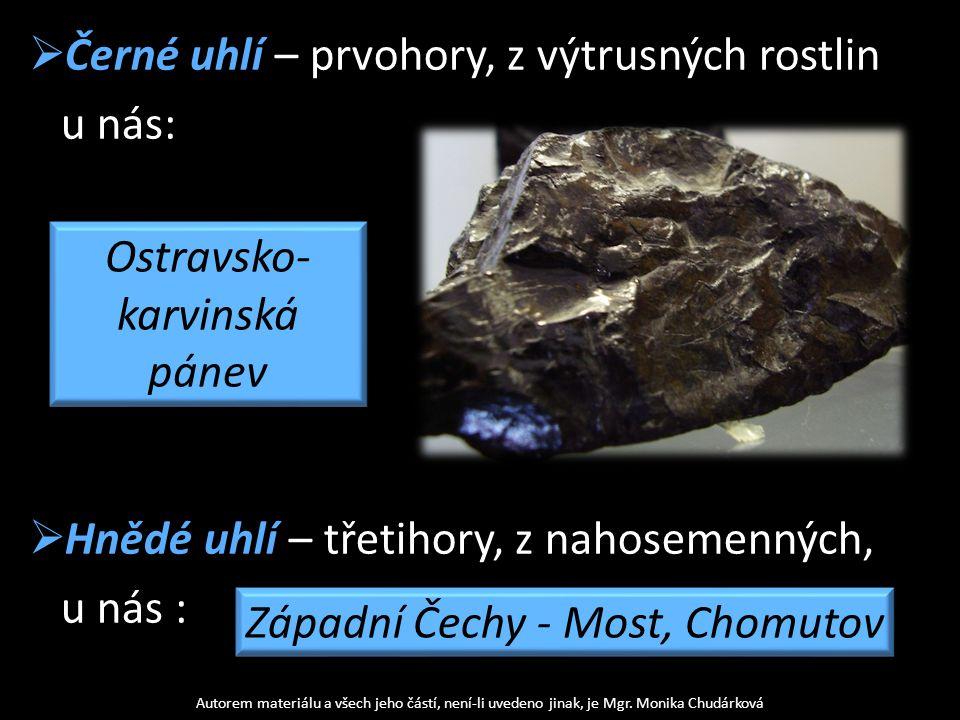  Černé uhlí – prvohory, z výtrusných rostlin u nás:  Hnědé uhlí – třetihory, z nahosemenných, u nás : Autorem materiálu a všech jeho částí, není-li
