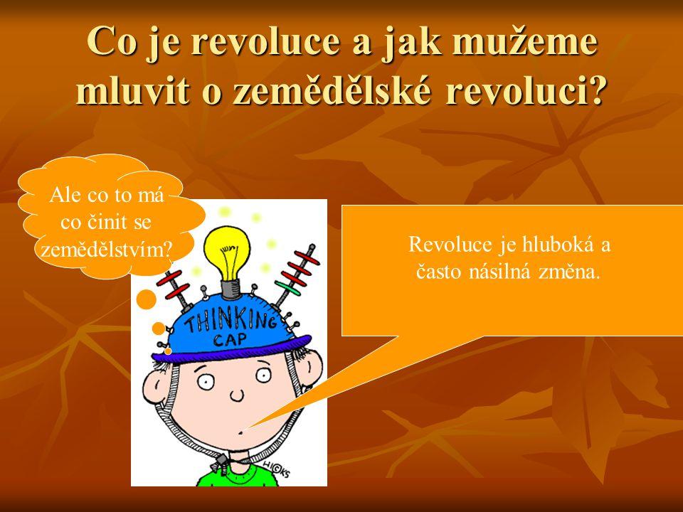 Co je revoluce a jak mužeme mluvit o zemědělské revoluci.