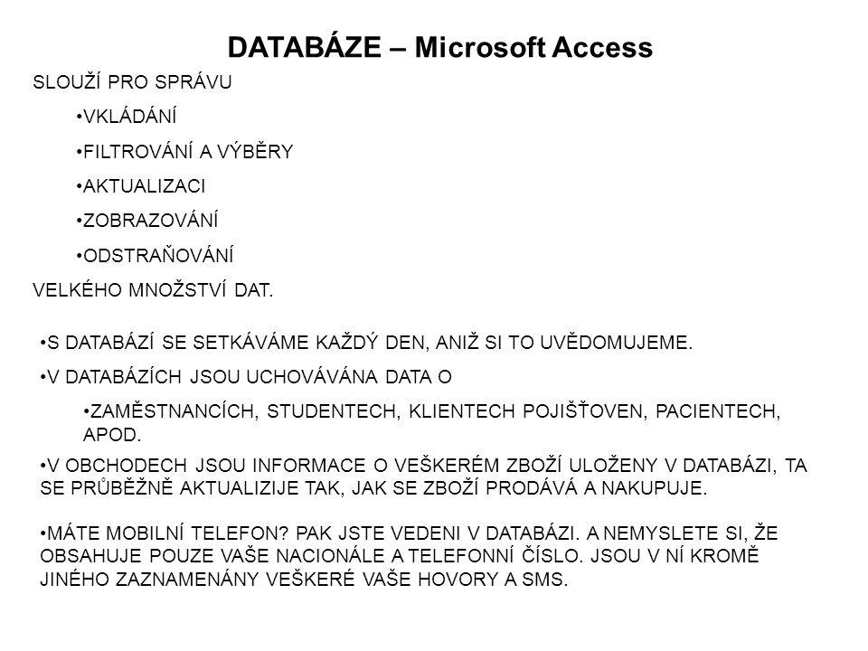 DATABÁZE – Microsoft Access V DATABÁZÍCH JSOU UCHOVÁVÁNA DATA O ZAMĚSTNANCÍCH, STUDENTECH, KLIENTECH POJIŠŤOVEN, PACIENTECH, APOD.
