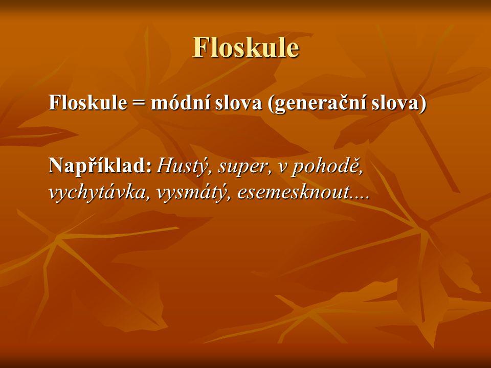 Floskule Floskule = módní slova (generační slova) Například: Hustý, super, v pohodě, vychytávka, vysmátý, esemesknout....
