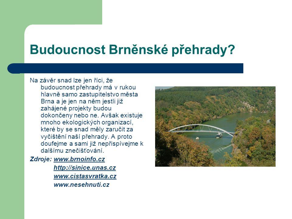 Budoucnost Brněnské přehrady? Na závěr snad lze jen říci, že budoucnost přehrady má v rukou hlavně samo zastupitelstvo města Brna a je jen na něm jest