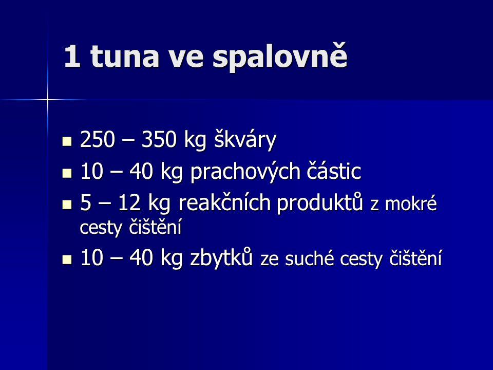 1 tuna ve spalovně 250 – 350 kg škváry 250 – 350 kg škváry 10 – 40 kg prachových částic 10 – 40 kg prachových částic 5 – 12 kg reakčních produktů z mo