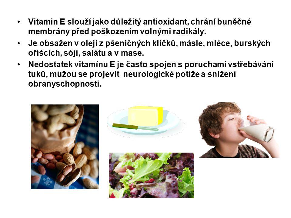 Vitamin E slouží jako důležitý antioxidant, chrání buněčné membrány před poškozením volnými radikály. Je obsažen v oleji z pšeničných klíčků, másle, m
