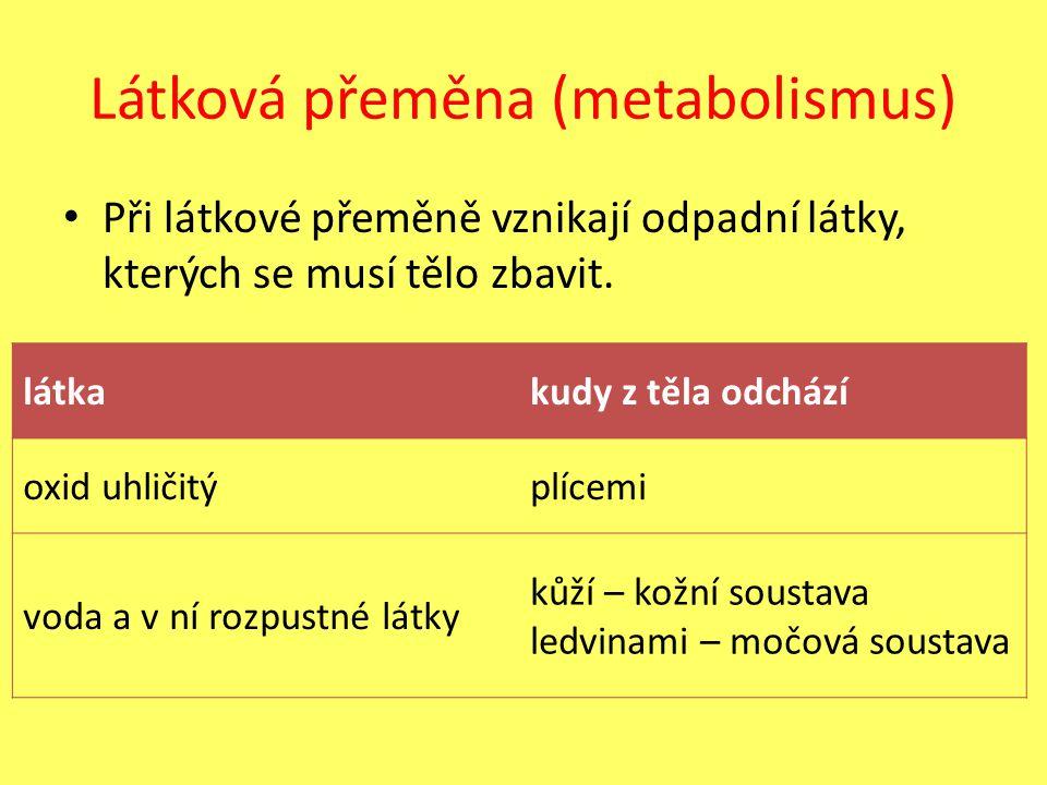 Látková přeměna (metabolismus) Při látkové přeměně vznikají odpadní látky, kterých se musí tělo zbavit. látkakudy z těla odchází oxid uhličitýplícemi
