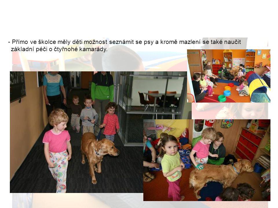 Cannis terapie - Přímo ve školce měly děti možnost seznámit se psy a kromě mazlení se také naučit základní péči o čtyřnohé kamarády.