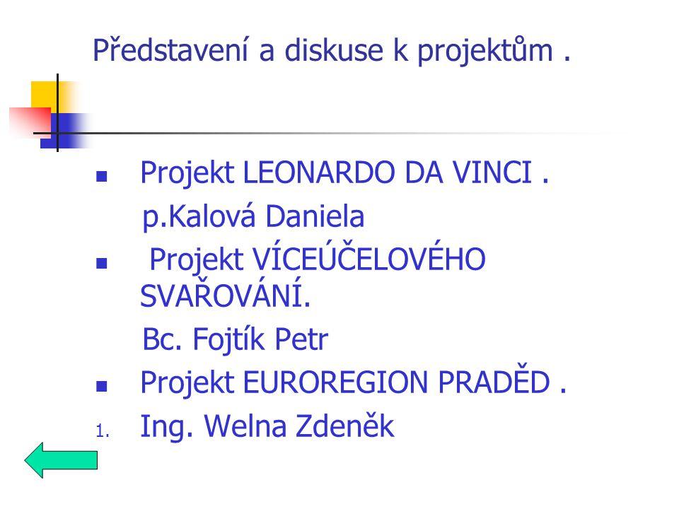 Představení a diskuse k projektům. Projekt LEONARDO DA VINCI.