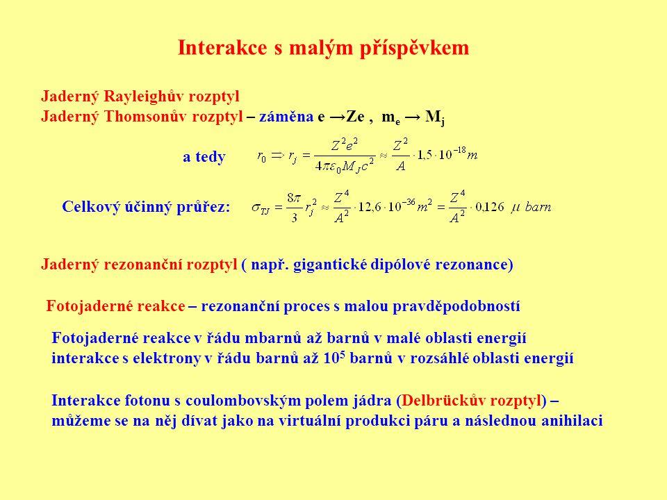 Interakce s malým příspěvkem Fotojaderné reakce – rezonanční proces s malou pravděpodobností Interakce fotonu s coulombovským polem jádra (Delbrückův