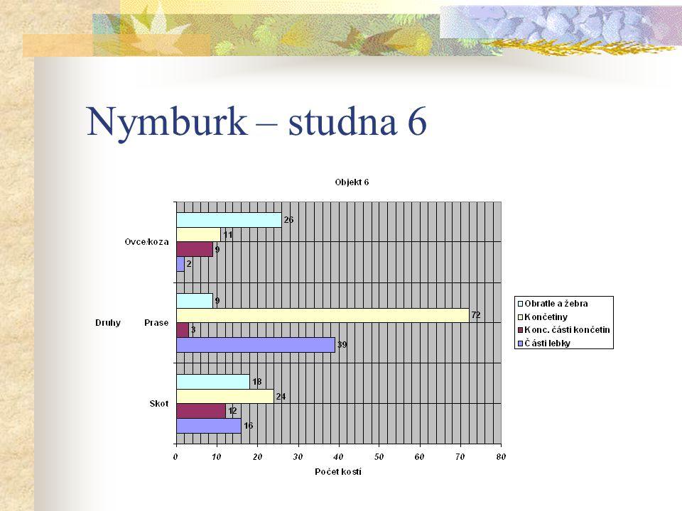 Nymburk – studna 6